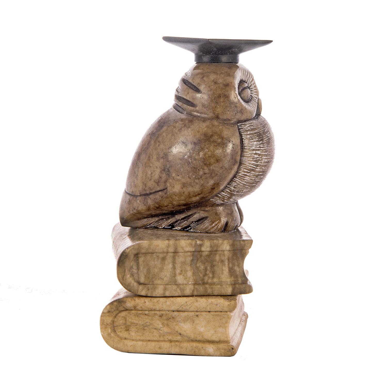Ученая сова