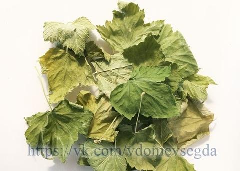 Листья черной смородины 20г