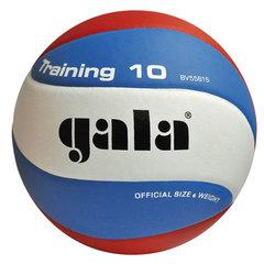 Волейбольный мяч TRANING