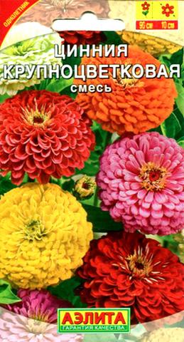 Семена Цинния Крупноцветковая смесь, Одн