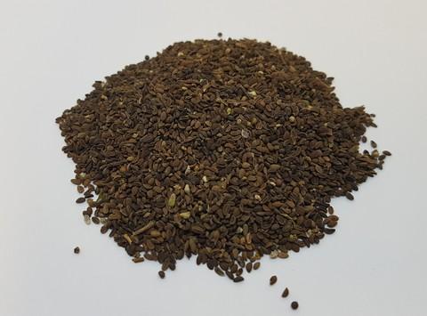 Семена фацелии - 20 кг