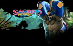 Sacred Citadel (для ПК, цифровой ключ)