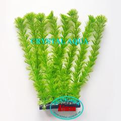Растение Атман H-007B, 20см