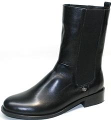Высокие ботинки зимние женские Richesse R-458
