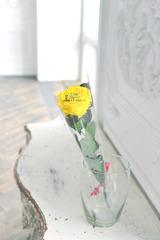 Роза на стебле ОПТОМ