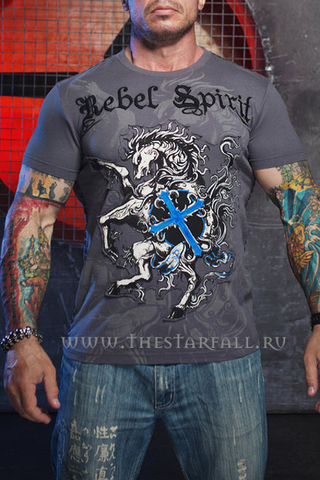 Футболка Rebel Spirit 43242