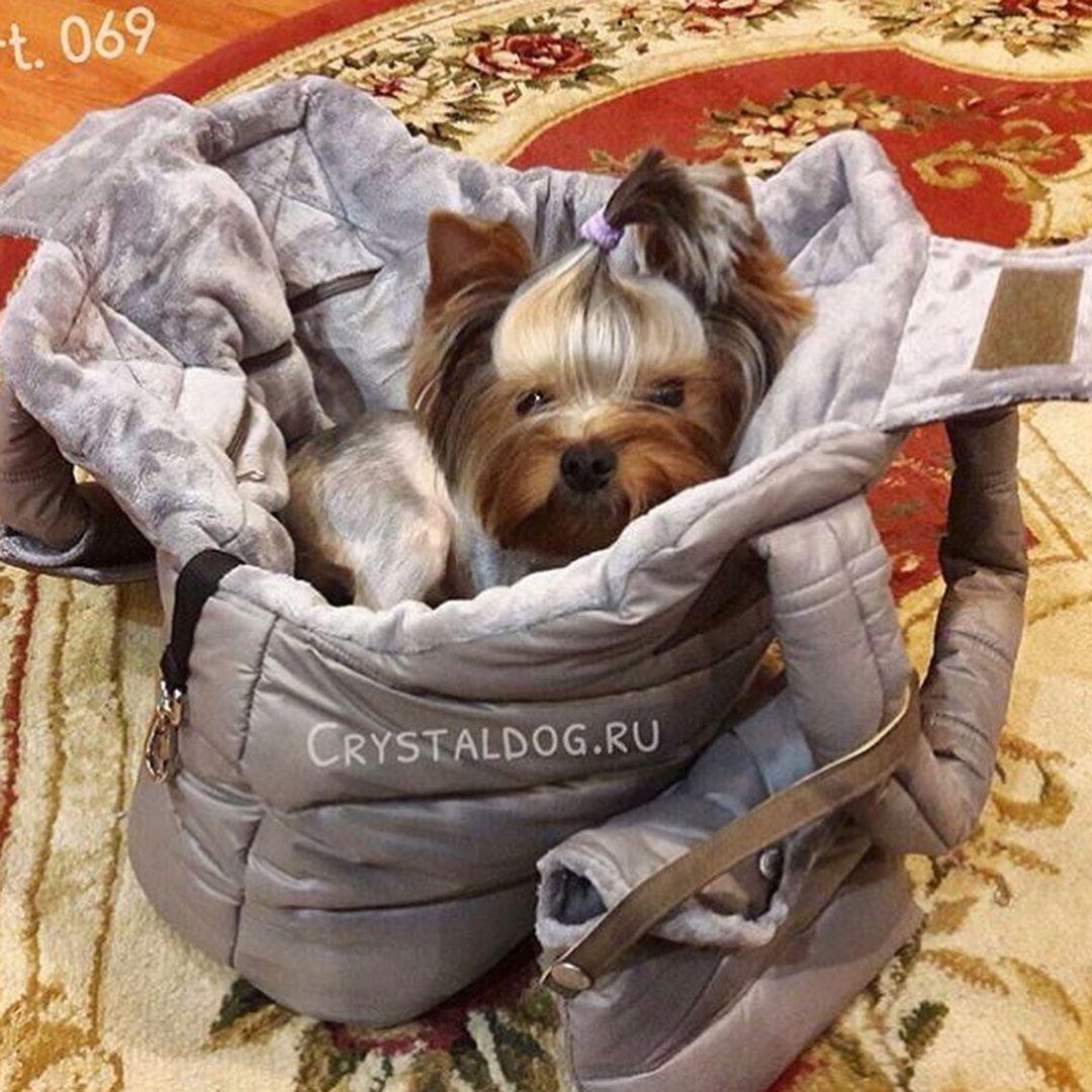 зимняя сумка для йорка