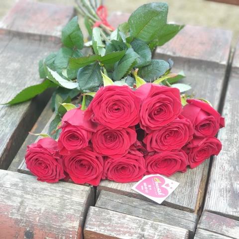 11 красных роз 50 см (PbFlora) #22969