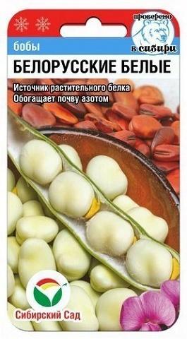 Белорусские белые 5шт бобы (Сиб Сад)