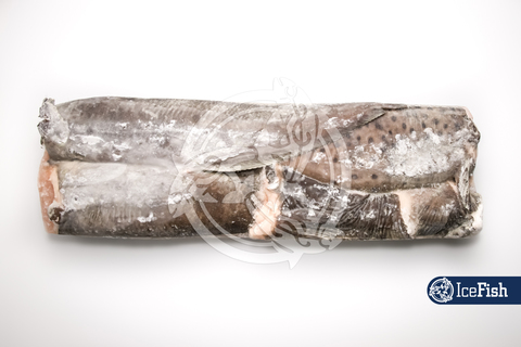 Зубатка пестрая  (вес.) Мурманск