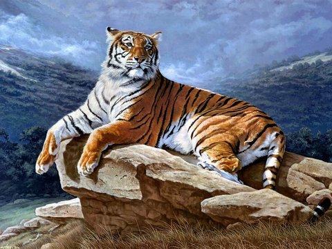 Алмазная Мозаика + Багет 40x50 Тигр на камне