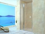 Душевая дверь RGW LE-04 110х195 06120411-11 прозрачное