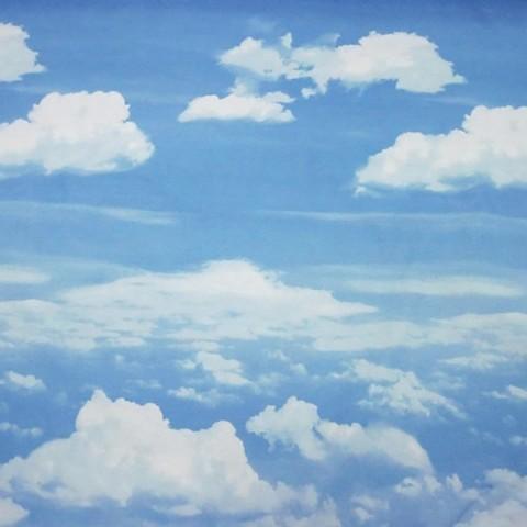 Перкаль 220 см 19351/1 Небо