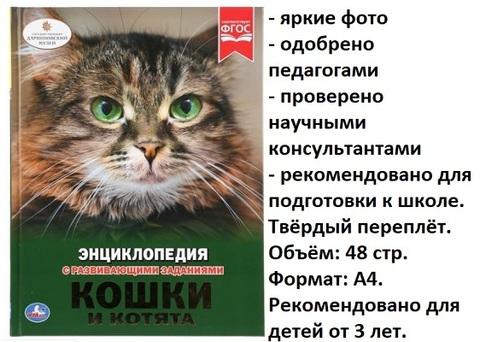 Книга Энциклопедия Кошки и котята 02698-3 (Умка)