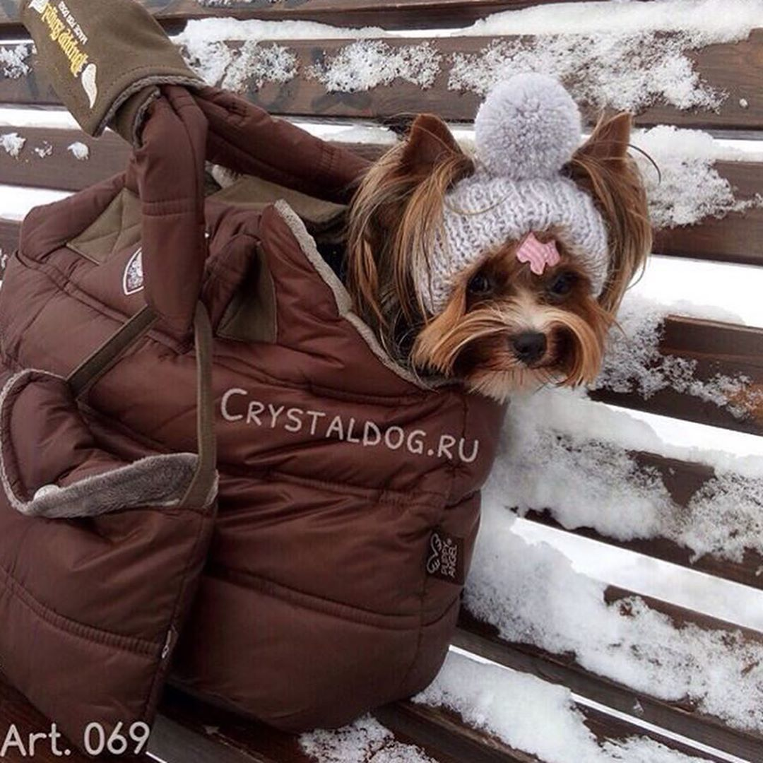 зимняя сумка для бивера