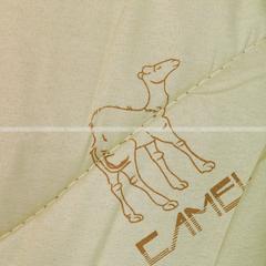 Одеяло верблюжья шерсть АП23-КП43