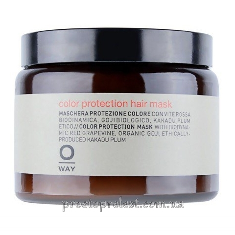 Rolland Oway ColorUp Color Protection Hair Mask - Маска для фарбованого волосся 500мл