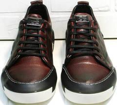 Мужские стильные кеды кроссовки весна осень Luciano Bellini C6401 MC Bordo.