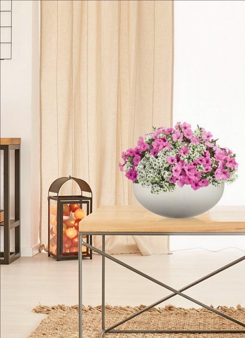Настольный горшок для цветов Идеалист Стоун Кубок уайд D36 H16 в интерьере