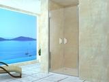 Душевая дверь RGW LE-06 80х195 06120608-11 прозрачное