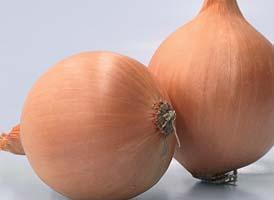 Репчатый Темптэйшен F1 семена лука репчатого (Syngenta / Сингента) Темптэйшен_F1.jpg