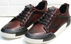 Walking shoes мужские сникеры кроссовки на осень мужские Luciano Bellini C6401 MC Bordo.
