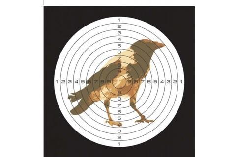 Мишень цветная картонная, рисунок ворона (50 шт./уп.) (140х140)