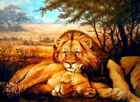 Алмазная Мозаика 40x50 Семья львов отдыхает (арт. S236)
