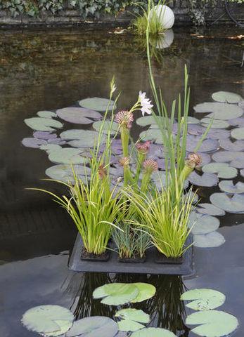Floating Plant Oasis 30x40 см  Плавающая корзина для растений