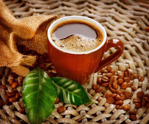 Алмазная Мозаика 40x50 Чашка и зерна кофе