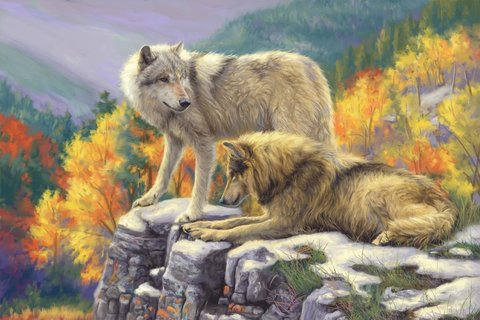 Алмазная Мозаика 40x50 Волки смотрят на лес со скалы (арт. SGA2773)