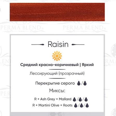 """RAISIN"" пигмент для бровей Permablend"