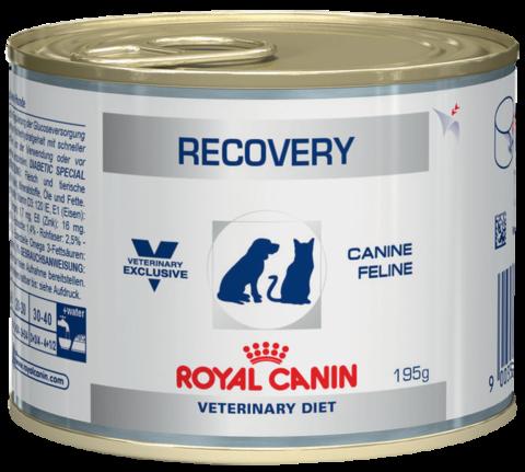Royal Canin Recovery для кошек и собак в период выздоравления