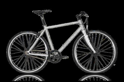 Kellys Physio 10 (2016) серый с черным