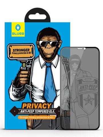 Защитное стекло BlueO для iPhone 11/XR закален. с олеоф.покр. | 2.5D рамка приватное черное 0.26мм