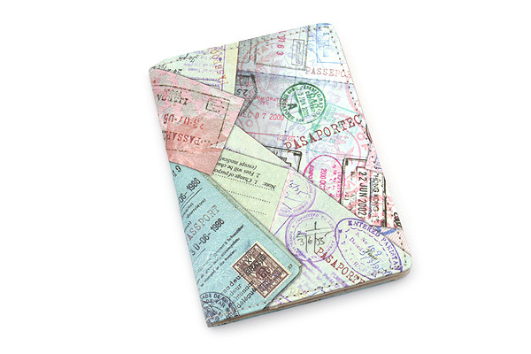 Обложка Passport Wallet Tyvek