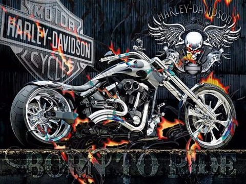Алмазная Мозаика 40x50 Мотоцикл и череп