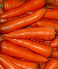 Абледо F1 семена моркови курода/шантане (Seminis / Семинис)