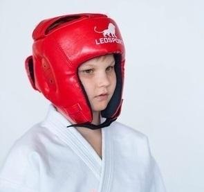 Шлемы Шлем защитный Leosport ELwJazkD8oE.jpg