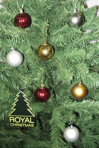 Ель Royal Christmas Washington 230180 (180 см)