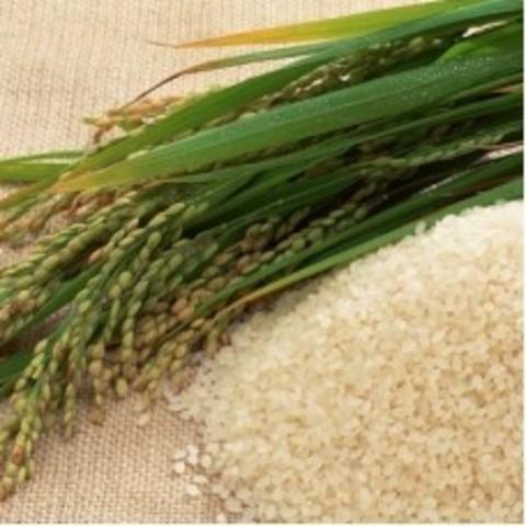 масло рисовых отрубей 30мл - 500тг