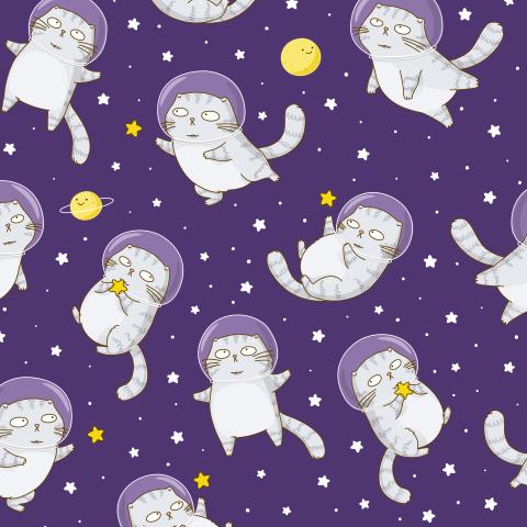 Кот астронавт собирает звезды