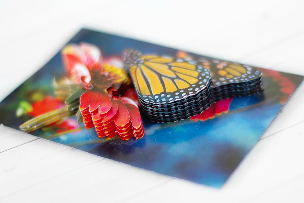Бабочка на гербере - готовая работа, вид снизу.