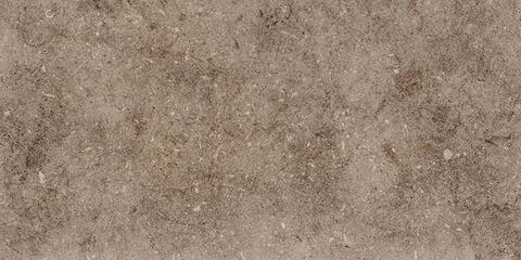 Плитка настенная Болонья  4  коричневый 600х300