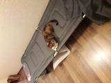 Кровать раскладная Westfield WBD-013